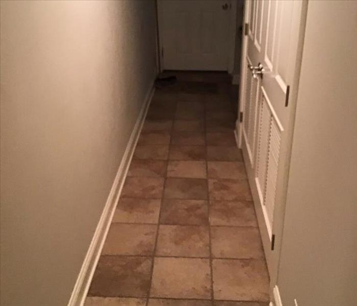 Wet brown tile in a hallway with white walls and white trim.