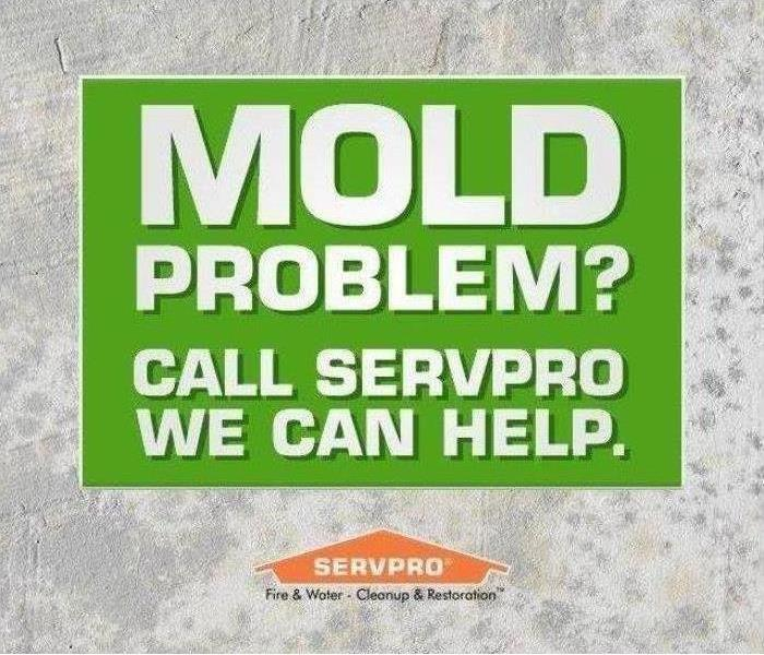 Green box with white letters and an orange SERVPRO logo under it.