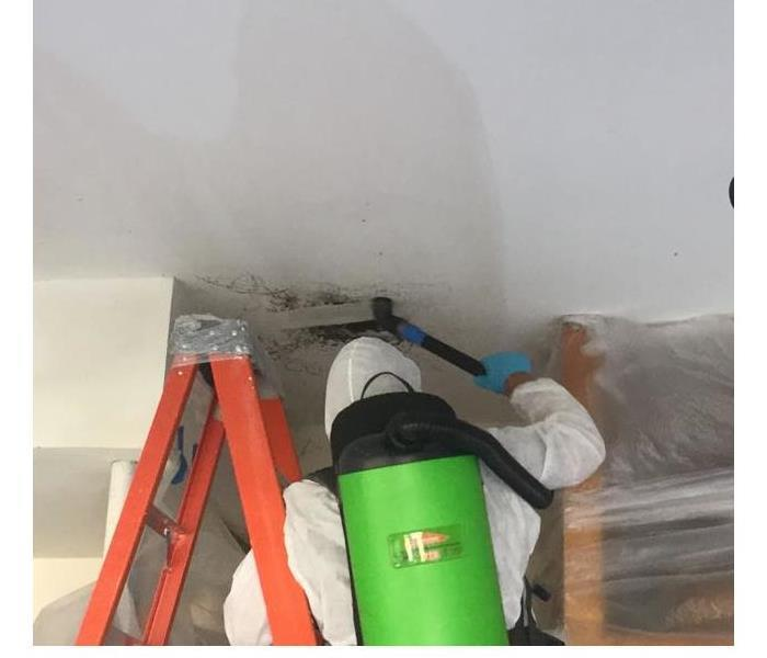 Mold Remediation Eden Prairie Residents:  Follow These Mold Safety Tips If You Suspect Mold